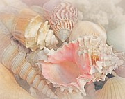 Nautical Digital Art - Dreaming of the Seashore by Elizabeth Budd
