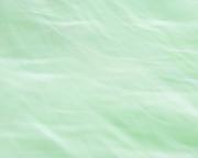 TONY GRIDER - Dreams of Mint