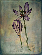 Studio Shot Mixed Media - Dreams of Autumn Crocus by Janice Rae Pariza