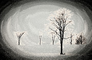 Surrealism Art Work - Dreams Of Trees by Miss Dawn