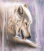 White Wolf Posters - Dreamscape Wolf IIII Poster by Sandi Baker