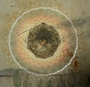 Dream Catcher Art Mixed Media - Dreamtime Dream Catcher  by Sacred  Muse