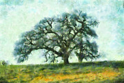 Arastradero Preserve Framed Prints - Dreamtime Oak Tree Framed Print by Priya Ghose