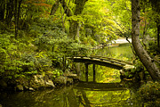 Japanese Garden Photos - Dreamy Japanese Garden by Sebastian Musial