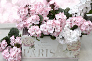 Pink Flower Prints Posters - Dreamy Romantic Cottage Chic Shabby Chic Paris Flower Box Poster by Kathy Fornal