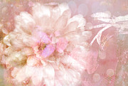 Abstract Floral Art Photos - Dreamy Romantic Pink Rose Floral Abstract by Kathy Fornal