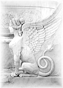 Black White Spiritual Angel Art Prints - Dreamy Sphinx Print by Sabrina L Ryan