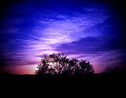 Purple Digital Art - Dreamy Sunset Sky with Silhouette by JaqStone