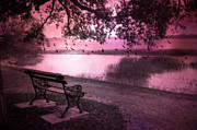 Pink Photos Prints - Dreamy Surreal Beaufort South Carolina Lake and Bench Scene Print by Kathy Fornal
