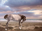 Equestrian Prints Posters - Dreamy Surreal Fantasy Horse Beach Scene Poster by Kathy Fornal