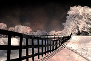Infrared Art Prints Photos - Dreamy Surreal Fantasy Infrared Color Landscape by Kathy Fornal