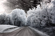 Surreal Infrared Dreamy Landscape Prints - Dreamy Surreal Infrared Country Road Landscape Print by Kathy Fornal