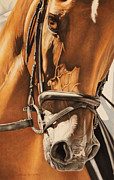 Details Pastels Prints - Dressage and Details Print by Joni Beinborn