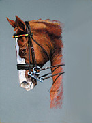 Barbara Lightner - Dressage Horse