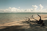 Beach Scenery Metal Prints - Drift Away Metal Print by Linda Lees