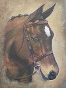 Horse Portrait Art - Drifter by Hayley Huckson
