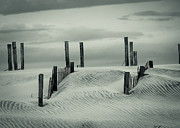 Sanddunes Photo Posters - Drifting Dunes Poster by Tom McGowan