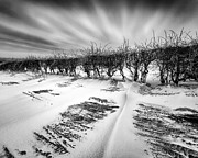 Black And White Image Framed Prints - Drifting snow Framed Print by John Farnan
