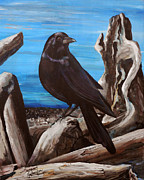 Crow Originals - Driftwood Darlin by Suzanne Schaefer