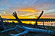 Amazing Sunset Mixed Media Prints - Driftwood Sunset Print by Brian Metz