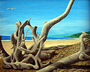 Pacific Coast And Western Artwork - Driftwood10x8 by Frederic Kohli