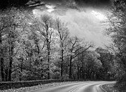 Carolyn Stagger Cokley - drive through the mountains bw