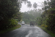 Moorea Photos - Driving Rain by Linda Phelps