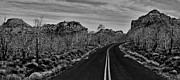 Zion National Park Photos - Driving Through Zion Black And White by Benjamin Yeager