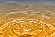 Gold Art Prints - Drops Print by Veikko Suikkanen