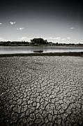Bonnie Bruno - Drought