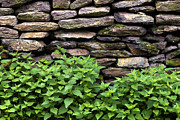 Bricks Prints - Dry Stone wall  Print by Fabrizio Troiani