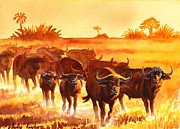 Cape Buffalo Paintings - Duba Traffic Jam by Andy Taylor