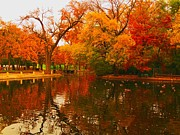 Robert Brown - Duck Pond In fall