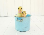 Ducklings Prints - Duck Soup Print by Amy Tyler