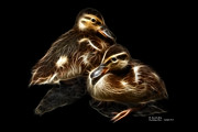 Rateitart Digital Art Prints - Duckling Duo - 9530 F C Print by James Ahn