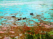 Summer Along The Canal Paintings - Ducklings On The Shore St Lawrence River Lachine Canal Art Of Quebec Landscapes Carole Spandau by Carole Spandau