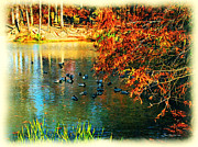 Ledge Photos - Ducks at Hinckley Lake Boathouse by Joan  Minchak