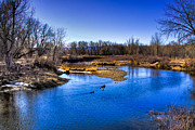 Trails Prints - Ducks on the River Print by David Patterson