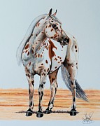 Horse Drawing Mixed Media Prints - Dukes Go Hancock Print by Cheryl Poland