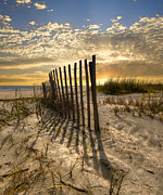 Fences Prints - Dune Fence at Sunrise Print by Debra and Dave Vanderlaan
