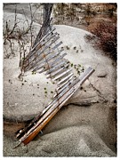 John Pagliuca - Storm Fence Series 5