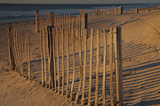 Sand Fences Prints - Dune Fences At First Light II Print by Steven Ainsworth