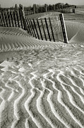 Sand Fences Prints - Dune Patterns II Print by Steven Ainsworth