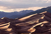Sand Dunes Posters - Dune Shadows Poster by The Forests Edge Photography - Diane Sandoval