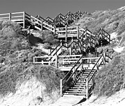 Wooden Stairs Posters - Dune Steps 02 Poster by Rick Piper Photography