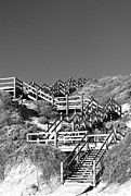 Wooden Stairs Posters - Dune Steps 03 Poster by Rick Piper Photography