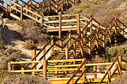 Wooden Stairs Posters - Dune Steps 05 Poster by Rick Piper Photography