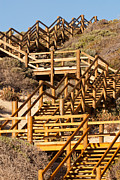 Wooden Stairs Posters - Dune Steps 06 Poster by Rick Piper Photography