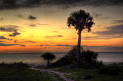 Dune Trail At Sunrise Print by Greg and Chrystal Mimbs