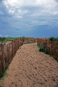 Carolyn Stagger Cokley - Dune Walk 758